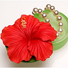Red Hibiscus Keepsake Box