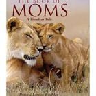 The Book of Moms - A Timeless Tale