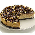 9 Inch Turtle Cheesecake