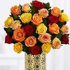 Two Dozen Long Stemmed Autumn Roses