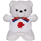 Romantic Love Teddy Bear