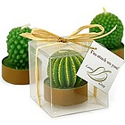 I'm Stuck on You Cactus Candle Favor