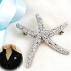 Crystal Accent Silver Tone Starfish Brooch