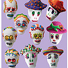 Just Add Sugar Mexican Sugar Skull Kit