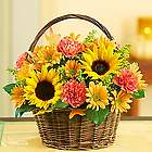 Fields of Europe for Fall Flower Basket