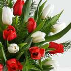 Christmas Tulip and Fresh Douglas Fir Bouquet