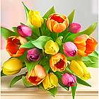 Delightful 15 Stem Tulip Bouquet
