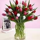 Sweetheart Tulips Bouquet