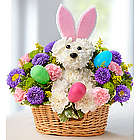 Hoppy Easter Carnation Puppy Flower Bouquet