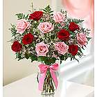 Shades of Pink and Red Premium Long Stem Rose Bouquet