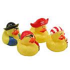 Pirate Rubber Duck