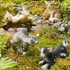 Miniature Cat Figurines