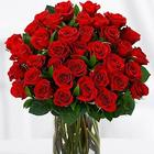 Three Dozen Long Stemmed Red Roses Anniversary Bouquet