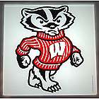 Bucky Badger Glass Lazy Susan