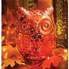 Mercury Glass LED Owl Accent Light