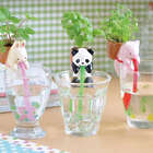 Basil Backpacking Panda Planter