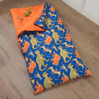 Kid's Dinosaur Sleeping Bag
