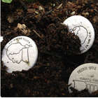 Seed Money Growing Coins