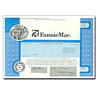 One Real Share of Fannie Mae Stock