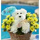 Doggie Paddle Basket of Flowers