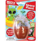 Space Plant Mini Terrarium