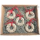Bird Seed Christmas Wreath Ornament Gift Set