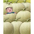 Your Photo in a Cantaloupe Baby