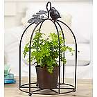 Meadow Showers Botanical Birdcage