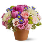 Spring Sonata Flower Pot Bouquet