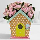 Springtime Blushing Birdhouse