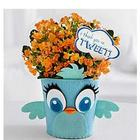 I Think You're Tweet Felt Planter with Kalanchoe Plant