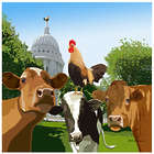 Cows on the Wisconsin Capitol Concourse Art Print