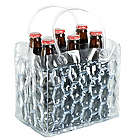 Chill It Clear Six Pack Bottle Cooler
