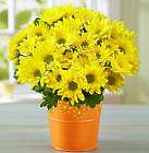 Cheerful Yellow Mum Bouquet