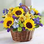 Fields of Europe Summer Bouquet in Large Basket