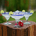 Happy Hour Margarita Glass Set