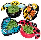 2 Busy Bug Gardens Kits