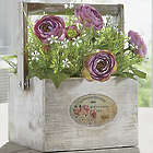 Cabbage Rose Plant in Rustic Wood Box