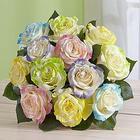One Dozen Easter Egg Roses
