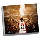 "Cleveland Cavaliers LeBron James ""Powder"" Canvas"