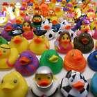 100 Assortment Rubber Ducks