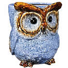 "9"" Baby Blues Ceramic Owl Container"