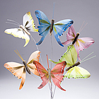 Light Color Butterfly Decorations