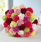Colorful 40 Carnation Bouquet