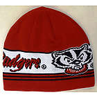 Men's Bucky Badger Knit Skully Hat