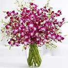 Extravagant Deluxe Purple Birthday Orchids Bouquet