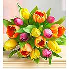 Radiant Tulips Bouquet