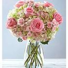 Premium Rose and Hydrangea Sympathy Bouquet
