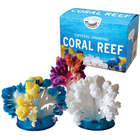 Crystal Growing Coral Reef Decoration and Art Kit