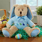 Boy's Personalized Stuffed Easter Bunny Plush Doll